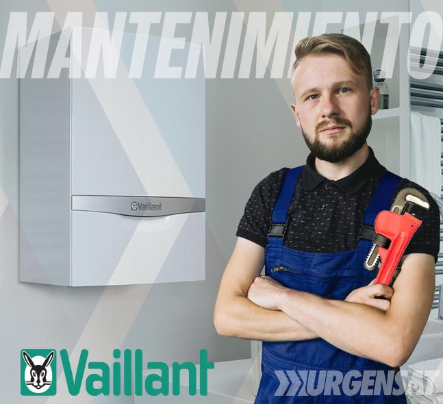Contratos de mantenimiento de calderas Vaillant en Madrid