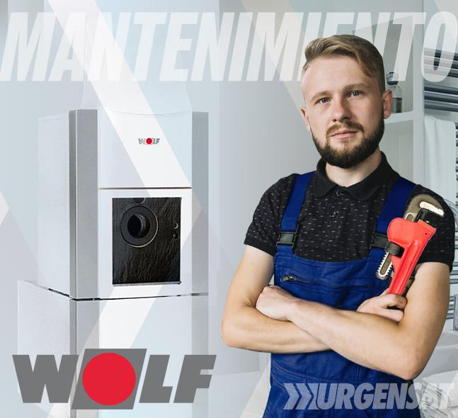 Contratos de mantenimiento de calderas Wolf en Madrid